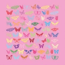 Art&So Canvasdoek Colourful Butterflies 60 x 60 cm Wanddecoratie & -planken Roze Canvas