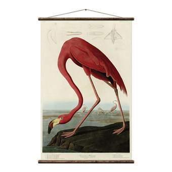 Erstwhile Amerikaanse Flamingo Poster Wanddecoratie & -planken Multicolor Canvas