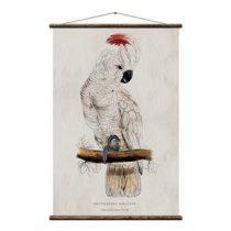 Erstwhile Kakketoe Poster Wanddecoratie & -planken Multicolor Canvas
