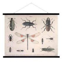 HKliving Insecten Schoolplaat 85 x 105 cm Wanddecoratie & -planken Multicolor Hout