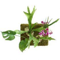 HKliving Wandpaneel met Kunstplanten Wanddecoratie & -planken Groen Kunststof